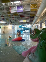 Frog Slide at the Durango Rec Center (copyright city of Durango, CO)
