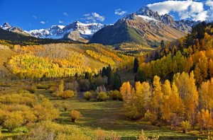 Golden state in Colorado's San Juan Mountains. (Photo by Thomas Morse)