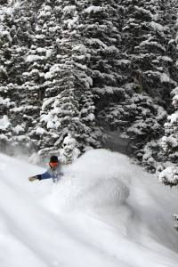 Get a face full of powder at Durango Mountain Resort.