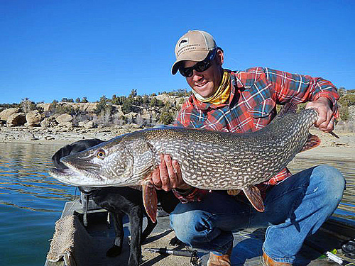 Fishing and fly fishing in durango durango quality inn for Durango co fly fishing