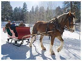old-fashioned-sleigh-rides-durango